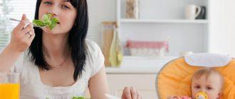 Эффективная диета для кормящих мам