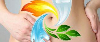 Основные принципы очистки организма