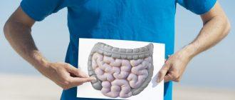 Почему происходит зашлакованность кишечника