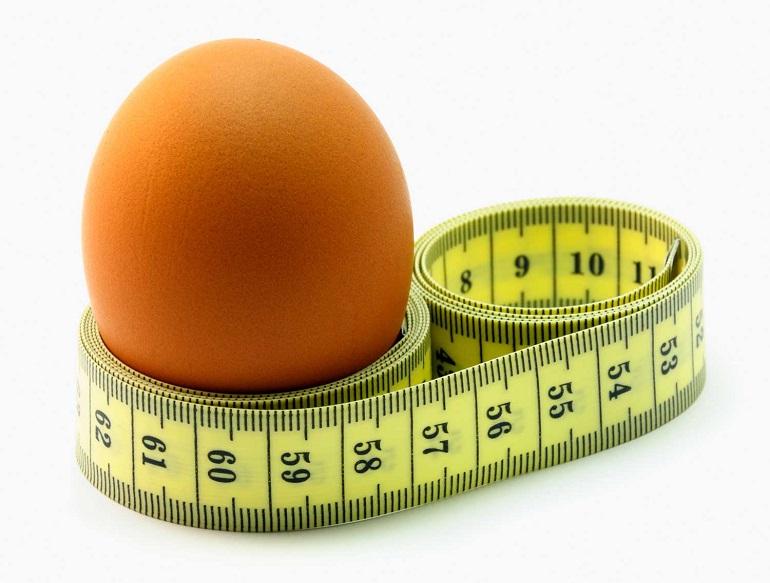 Яичный экспресс похудение