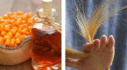 Как приготовить домашний шампунь с маслом облепихи для здоровых волос