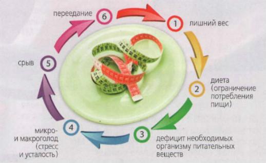 Почему низкокалорийные диеты работают с обратным эффектом