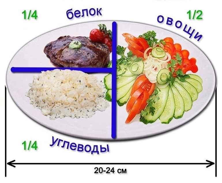 Что такое тарелка здорового питания и как ее составить правильно