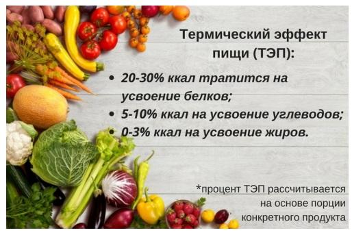 Калории и организм: сколько калорий сжигается при переваривании пищи?