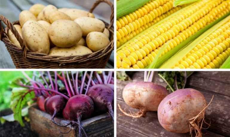 Овощи, которые препятствуют похудению