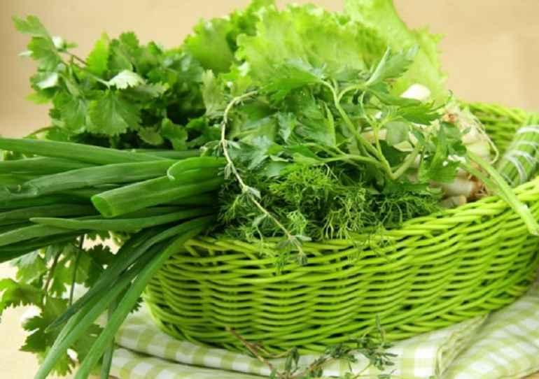 Топ 5 видов зелени, которая помогает сбрасывать вес