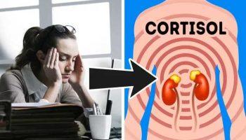 Как высокий уровень кортизола влияет на вес